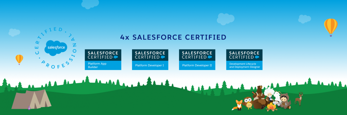 Test Data for Custom Metadata in Apex Test Class – SFDC with